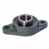 UCFL203 17mm 2 Bolt Flange Bearing Unit - LDK